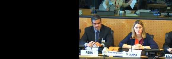 Delegación peruana frente a Comié CED